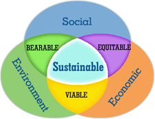 sustainability Three Pillars